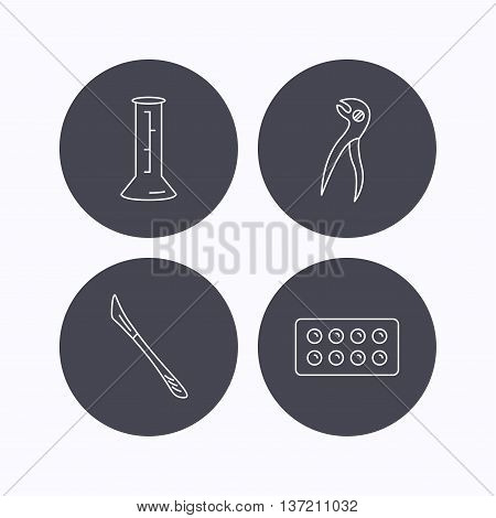Lab beaker, tablets and dental pliers icons. Scalpel linear sign. Flat icons in circle buttons on white background. Vector
