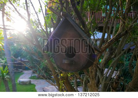 old wood bird house on the tree