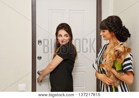 Girl holds on hands and embracing Yorkshire Terrier. Pedigree dog. Funny animals. Girl and pet welcome guests.
