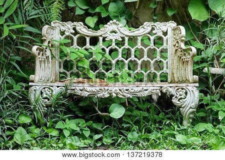 Old vintage bench in the green garden