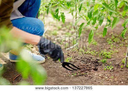 Loosening soil