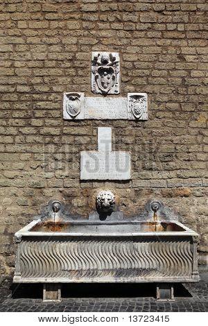 fonte na parede do Vaticano, fino jato de água, a escultura, a cabeça de Leão