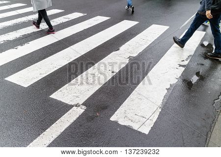 Close up wet crosswalk and walking step on city street safety concept.