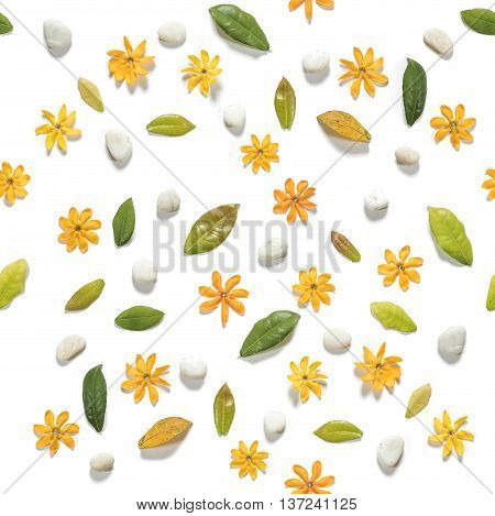 Seamless, yellow flowers with leaves and white pebbles stones, on white background