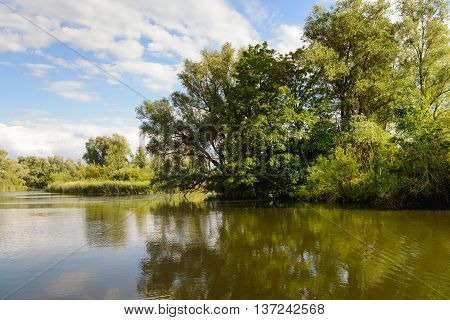 Small lake with overhanging branches above the water. The calm water surface reflects the trees. The evening approaches and the light becomes soft.
