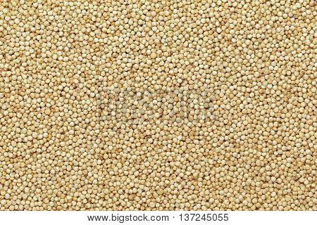 Organic Quinoa (Chenopodium quinoa) seeds. Macro close up background texture. Top view.