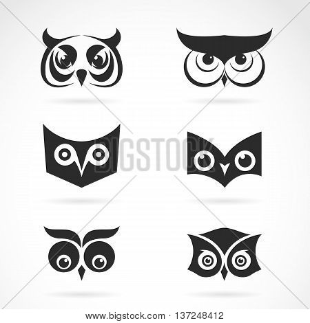 Vector image of an owl face design on white background. Vector owl face for your design.