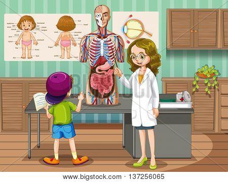 Doctor explaining about human anatomy illustration