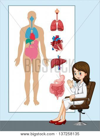 Doctor and anatomy chart illustration