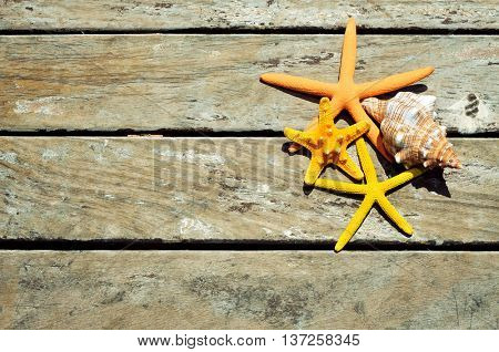 high-angle shot of some starfishes and a conch on a weathered wooden pier, with a blank space