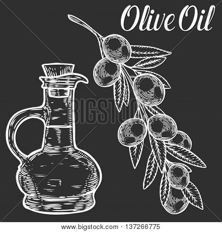 Olive Set Branch With Berry And Leaf, Oil Bottle Diet Plant Superfood Ingredient. Natural Organic Ha