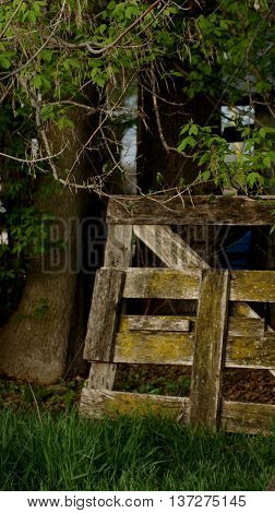 Vintage and mossy dilapidated farm gate next to tree