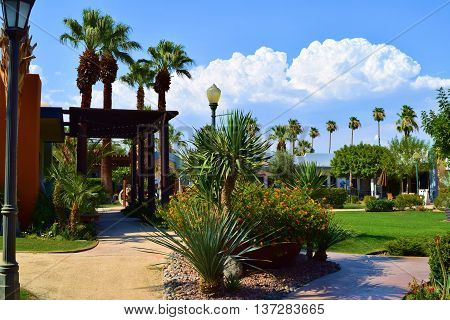Courtyard with a green lawn surrounded by Palm Trees and plants