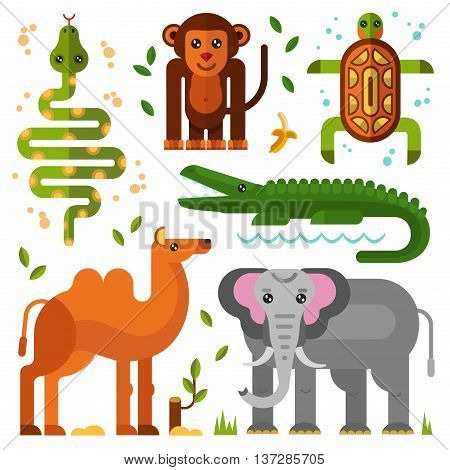 Flat vector geometric illustration set of jungle or exotic animals. Bactrian camel, elephant, smiling monkey or gorilla with banana, turtle, snake, crocodile with big teeth. Wild nature concept.