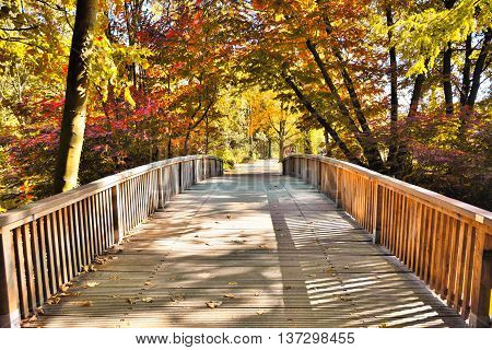 Idyllic autumn scene, with red and yellow autumn trees and wooden footbridge over a little creek.