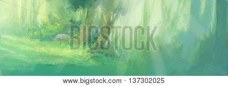 sunrise in the forest background for illustration