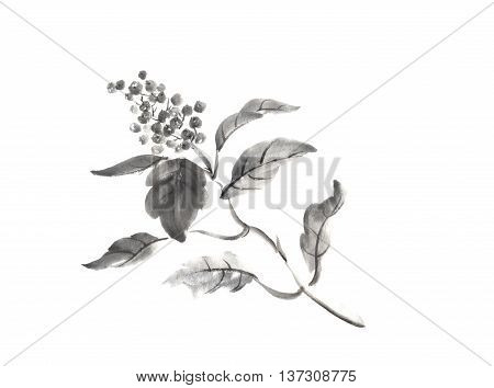 Japanese style sumi-e wild berry ink painting. Great for greeting cards or texture design.