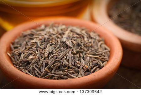 Close up of Caraway seeds with other spices