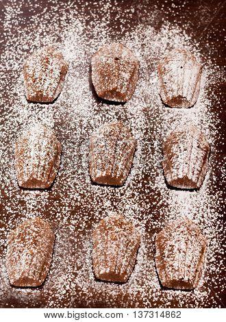 Madeleine Cake In Dark Background