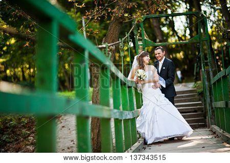 Wedding Couple Stay On Green Wooden Bridge