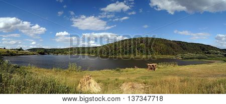 Summer landscape with big pond and forrest (panorama)