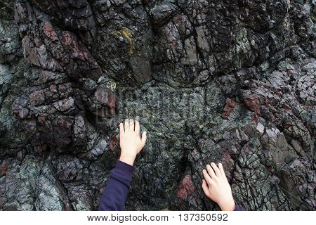 A pair of hands desperately clinging by the fingertips to a harsh, granite rock face.