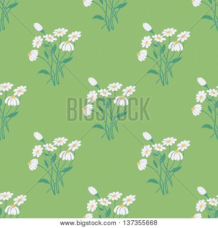 Seamless Pattern with Graceful Chamomile Bouquets on the Soothing Green Background. Vector EPS10.
