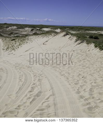 Protected National Seashore area in Provincetown, MA with a sand road.
