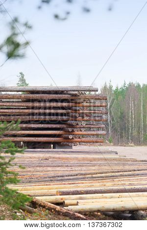 Deforestation Forests To Build New Houses
