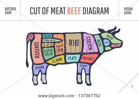 Cut of meat set. Poster Butcher diagram and scheme - Cow. Colorful vintage typographic hand-drawn on white background for butcher shop. Vector illustration