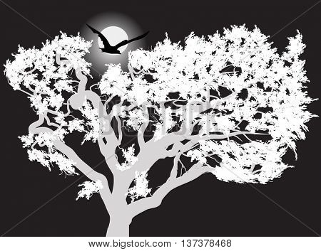 illustration with large bird above tree at night