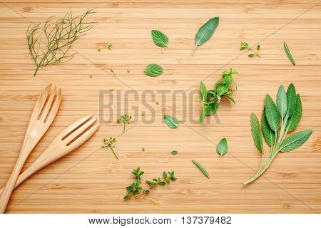 Aromatic Herbs And Spices  Green Mint ,fennel ,oregano, Sage,lemon Thyme And Peppermint With Fork On