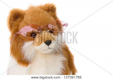 Dolly Dog toy wearing  glasses on white background.
