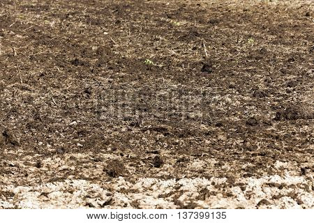 a tractor plowed field agricultural land. Spring, sown close-up.