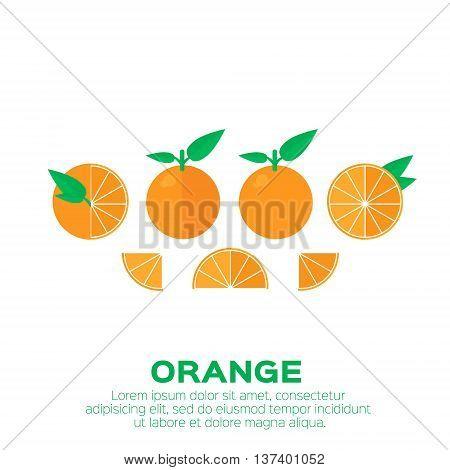 Summer set of Orange fruit with leaf. Whole and cut half healthy orange. Vector illustration