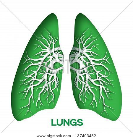 Lungs origami. Green Paper cut Human Lungs anatomy with bronchial tree. Applique Vector design illustration.