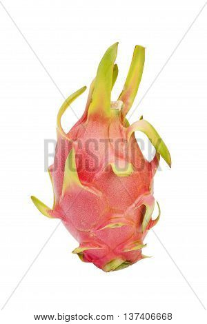 Dragon Fruit Or Pitaya