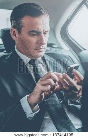 Quick business message. Confident mature businessman typing message on his smart phone while sitting on the back seat of a car