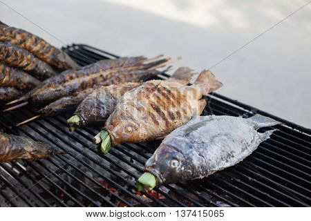 Hot grill fishes such as Catfishes and Nile tilapias on the grill
