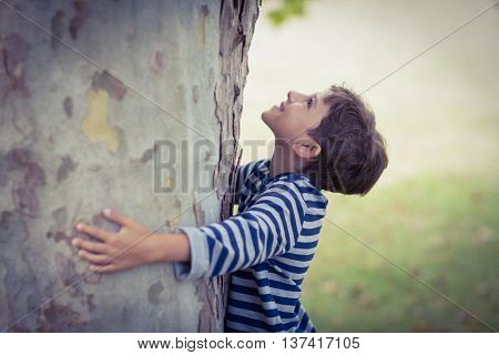Smiling boy hugging tree trunk in park