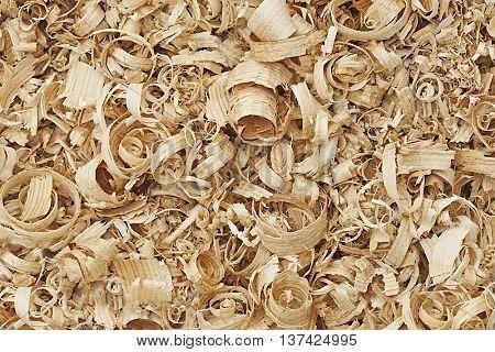 spiral wood shavings background