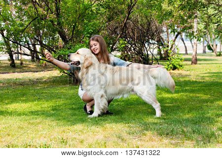 Young girl showing dogs exterior. Golden Retriever and the owner on green grass outdoors in summer.