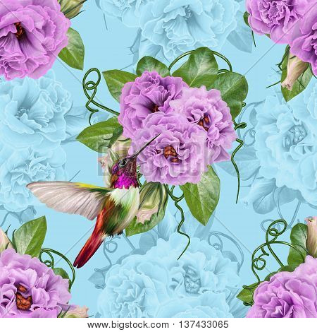 Pattern seamless. Old style. Floral background. Fine weaving lace mosaic. Bouquet of flowers of lilac roses. Little flying bird hummingbirds.
