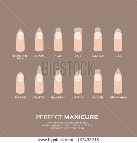 Different nail shapes. Woman fingers. Fingernails fashion trends. Vector design illustration