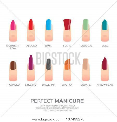Different colorful nail shapes. Woman fingers. Fingernails fashion trends. Vector design illustration