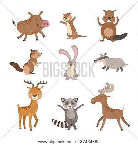 Forest Animals Collection Of Stylized Cute Childish Flat Vector Drawings Isolated On White Background