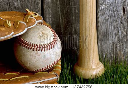 Baseball bat and ball on green grass.