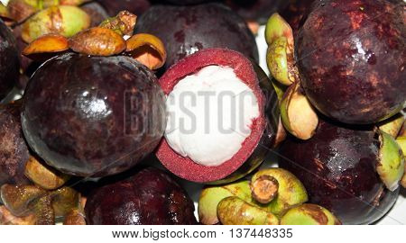 The picture of the tropical fruit  Mangosteen