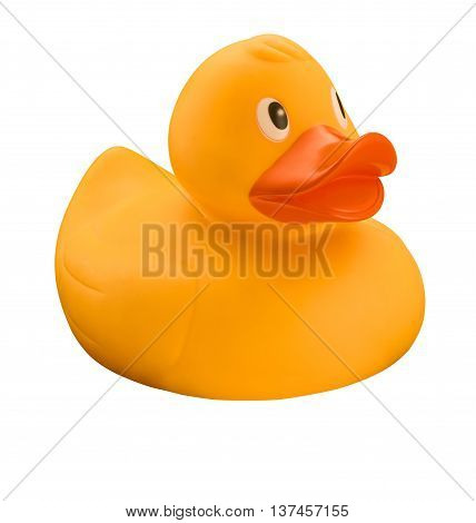 Yellow rubber duck with orange beak on white background