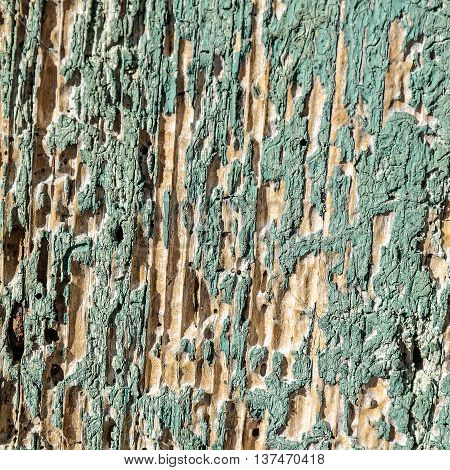 Close up from Old  cracked  and weathered paint